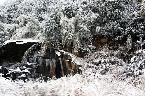 江南雪景赛北国。  积雪覆盖仿佛如童话世界。 1月19日报道:千里冰封,万里雪飘提起冰天雪地似乎只是我国北方地区的专利,其实也不然,在江南同样也能见到胜似北国的雪景。 连日来,位于浙江安吉的天荒坪风景区连降瑞雪,使风景区披上了一层厚厚的银装,远远望去仿佛就是一幅接一幅的天然山水画,如梦如幻。据当地人讲,天荒坪海拔一千多米,气温相对较低,加之独特的地理位置,每年冬天雪量较大。但像这样连续下雪一周,这几年还是不多见的。数日积雪形成独特的雪景,吸引了大量的游客前来观赏。