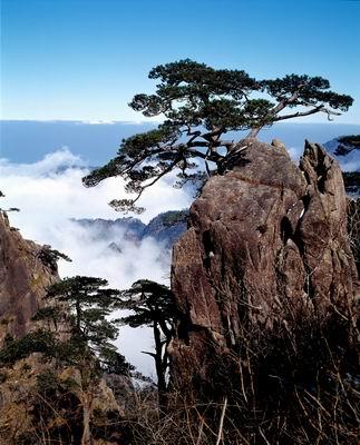 """黃山,中國十大風景名勝之一,90年被聯合國教科文組織列入""""世界"""