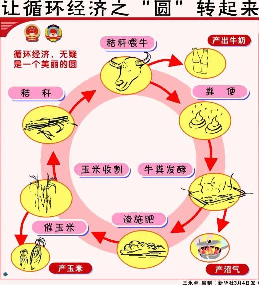 循环经济:如何画好这个美丽的圆?(图)